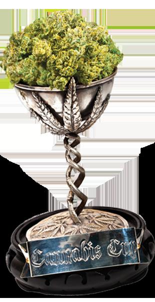 cannabis-cup-2